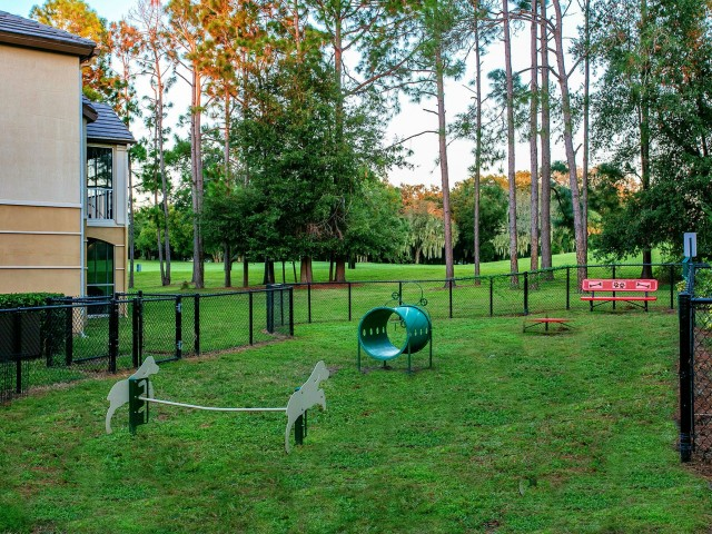 Alvista Metrowest Orlando Florida outdoor fenced bark park with agility equipment next to a residential building with a golf course wooded iview