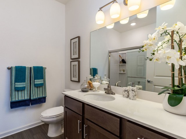 Treviso Grand Apartments - North Venice, Florida bathroom with large vanity, mirror and designer lighting