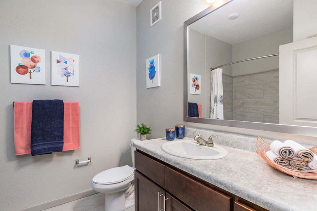 San Mateo Apartments Kissimmee Florida bathroom with framed mirror