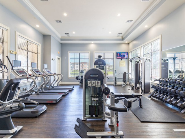 Park Lane Apartments in Gainesville fitness center with expansive windows and cardio and strength equipment