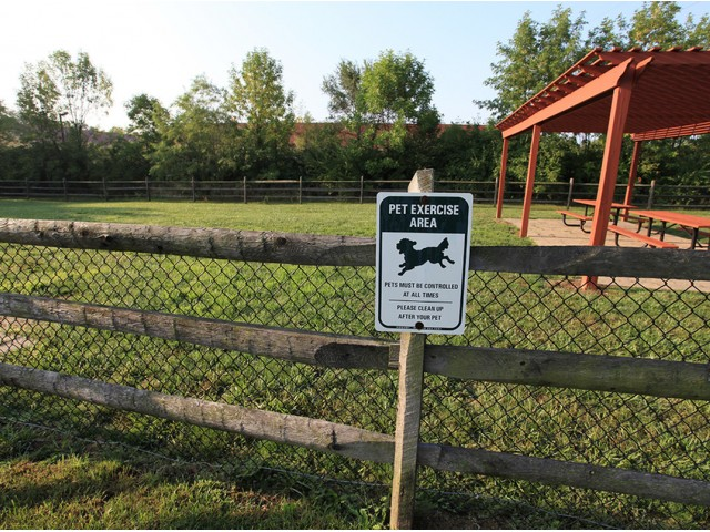 Image of Dog park for Arbors of Anderson