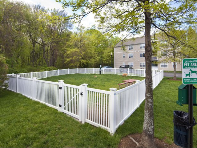 Hang out with your furry friend at the dog park of our West Warwick apartments for rent at Greenwich Place