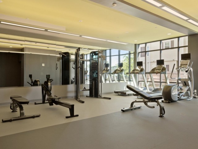 Image of Gym for Link 480