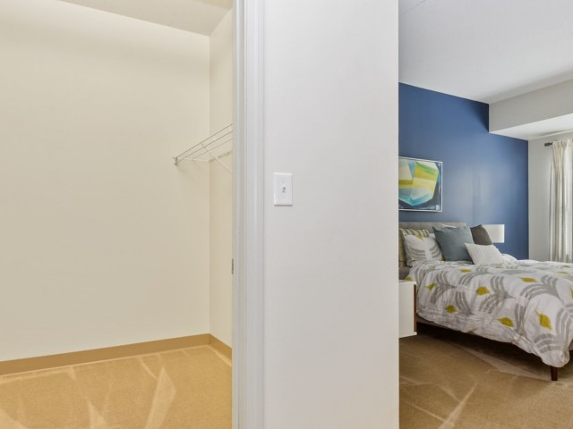 Spacious bedroom closet