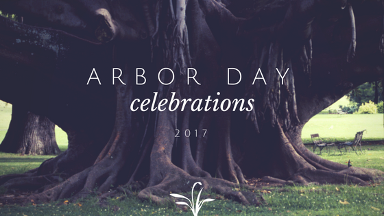 All About Arbor Day-image