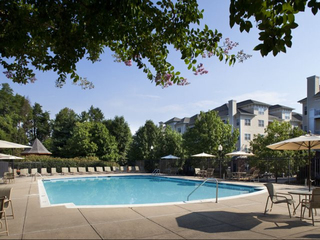 Park Station Blog, Gaithersburg, MD  We have an amazing swimming pool! We've rounded up some entertaining pool games for summer fun!