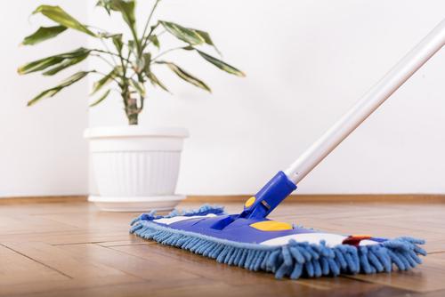 Sweep it Away -- Floor Care 101-image