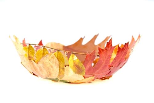 Thanksgiving Ideas in November-image