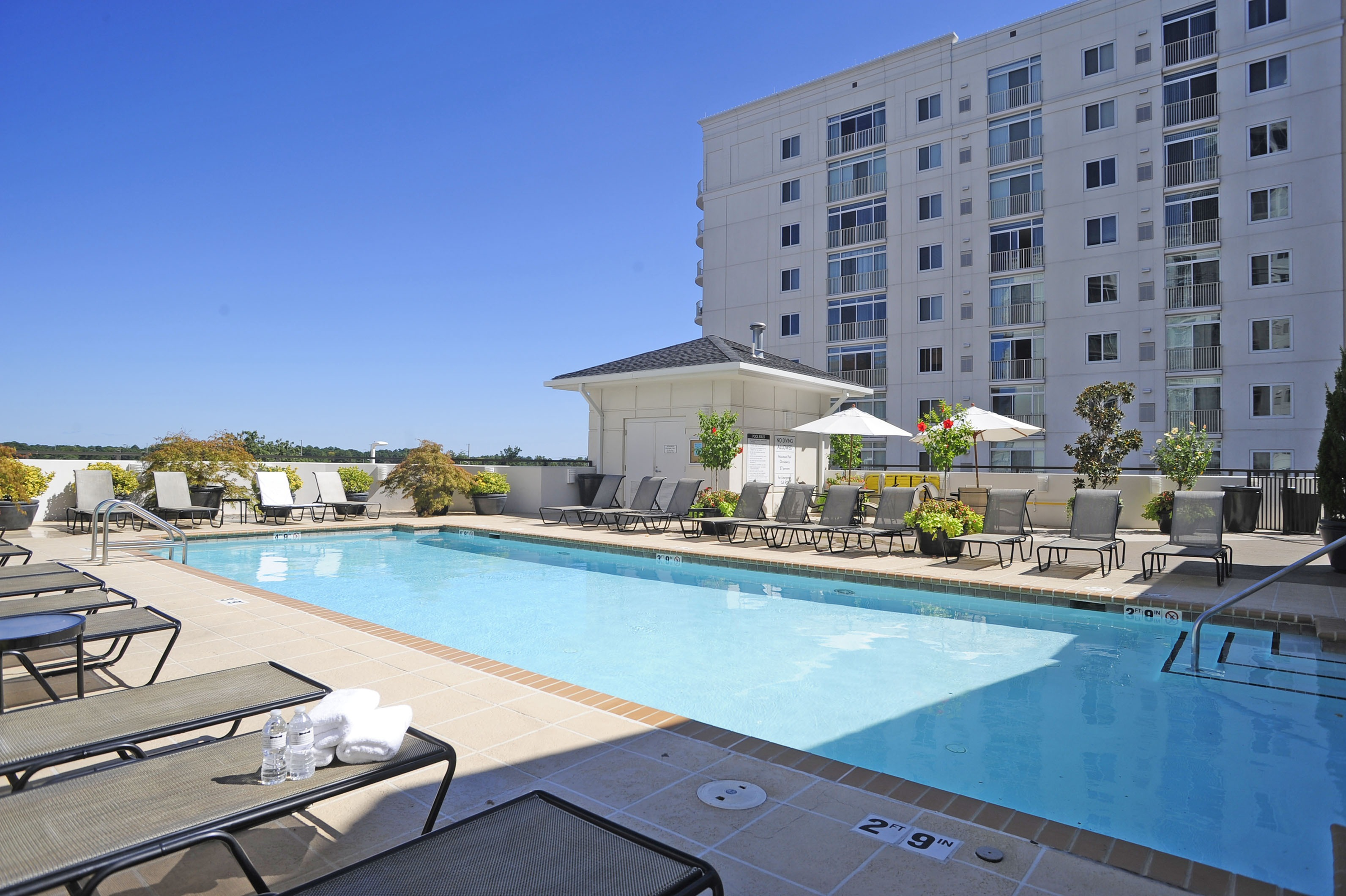 Image of Rooftop Pool for The Cosmopolitan Apartments
