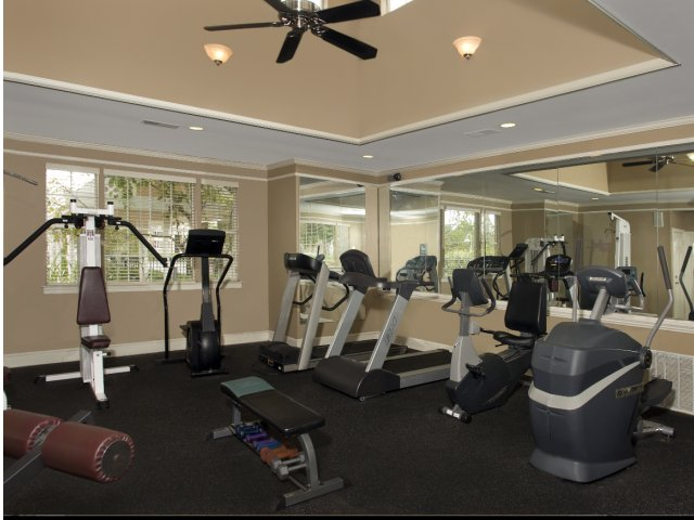 Image of State-of-the-art 24/7 Fitness Center for Dogwood Creek
