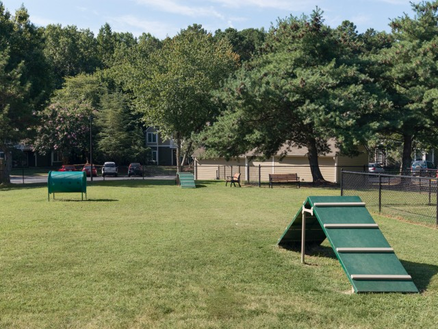 Image of Bark Park for Steeplechase Apartments