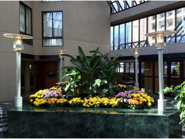 Boston MA Apartment Rentals | The Greenhouse Apartments