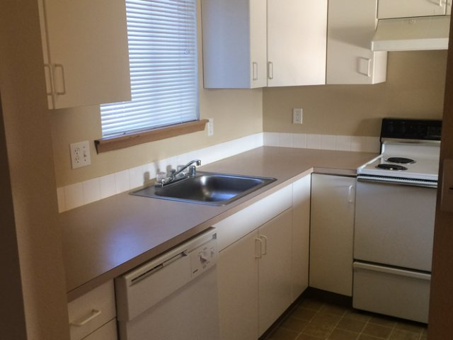 Image of Dish Washer for McMurray Park Apartments
