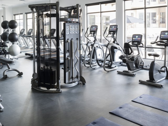 Image of FLEX: State-of-the-art cardio center and strength training studio for Cantabria at Turtle Creek Apartments