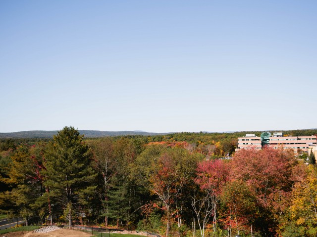 Image of Beautiful wooded views* for Talia Apartments