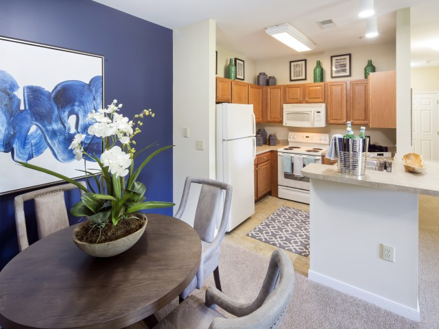 Kitchen at River Forest apartments in Chester, VA