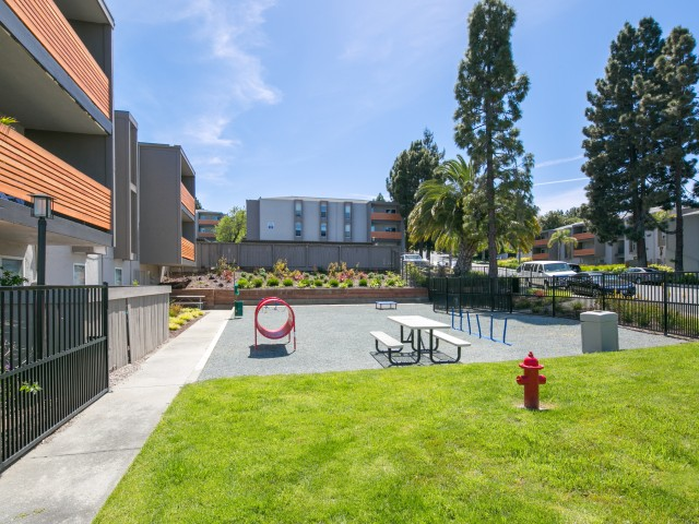Dog Park at Bayside Apartments in Pinole, CA
