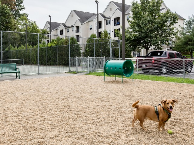 Image of Pet friendly with bark park for Heritage on the Merrimack