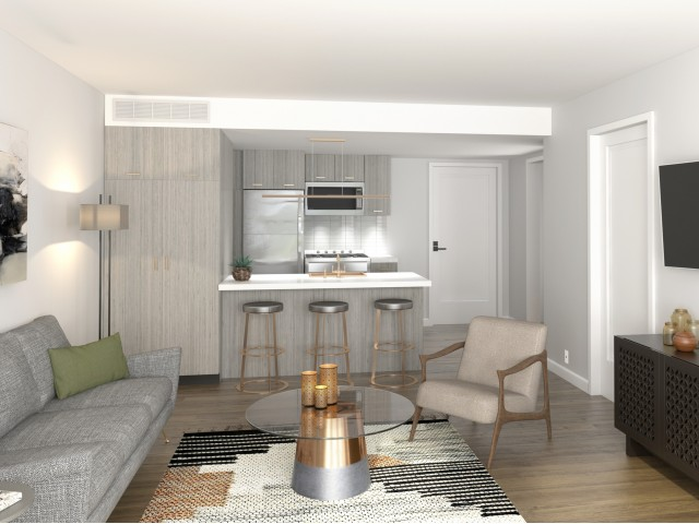 Image of Chef-inspired kitchens complete with Quartz Countertops and Stainless Steel Appliances for The Hamilton Midtown Detroit