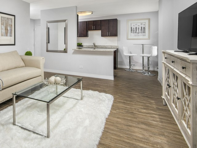 Apartment featuring plank flooring