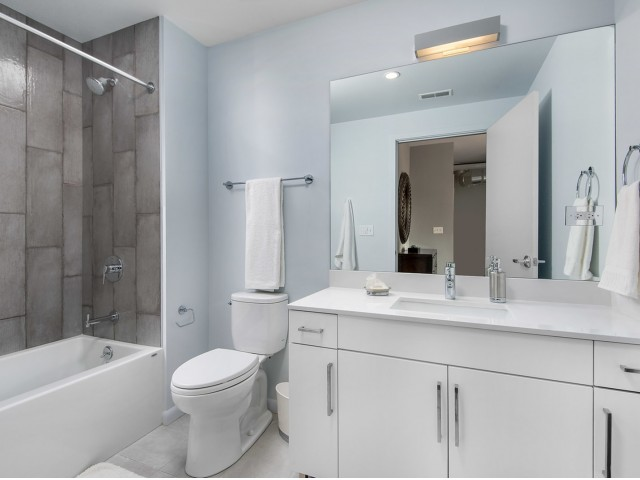 1 Bed + Den Bathroom