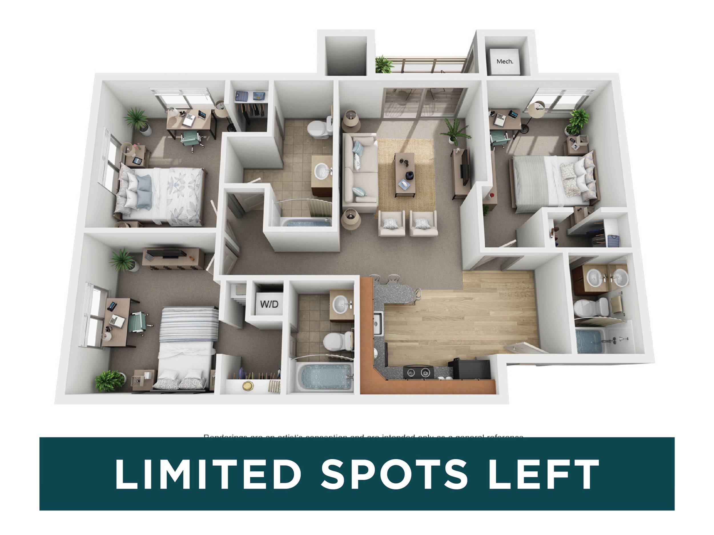 3b x 3b Mount Elbert - limited spots left