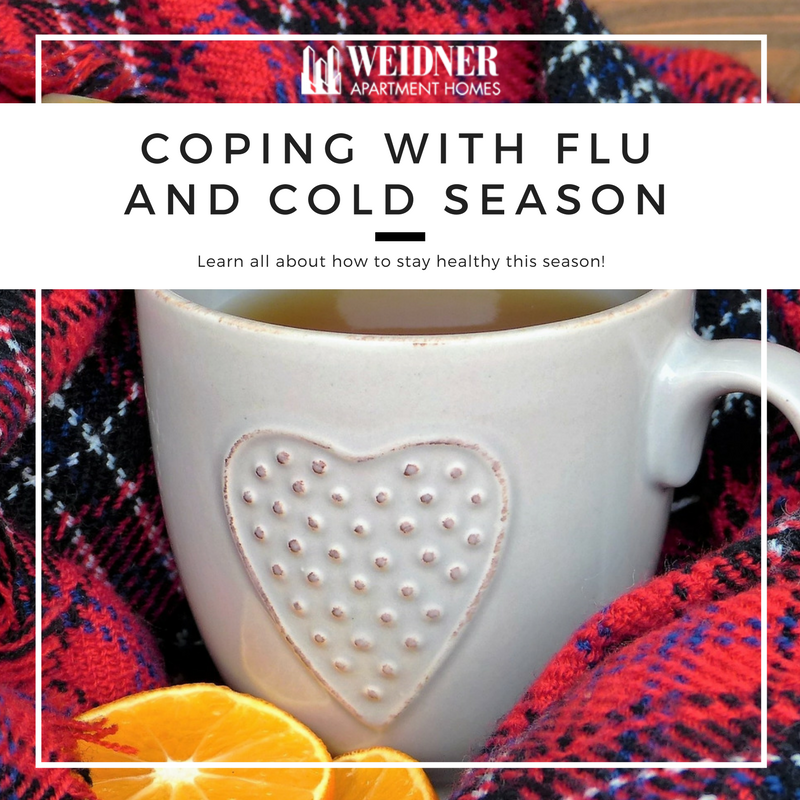 Coping with Flu and Cold Season