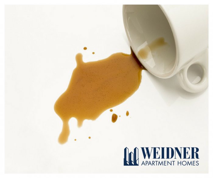 How To Remove Coffee Stains >> Apartment Living 101 Easily Remove Old Stains Coffee Stains
