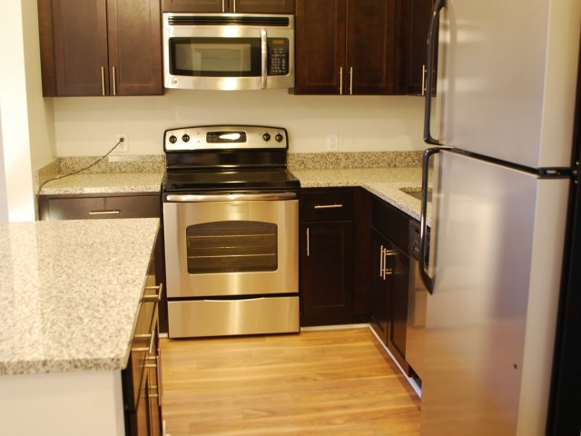 Image of Stainless Steel Kitchen Appliances with Microwave for 520 Park Avenue Apt