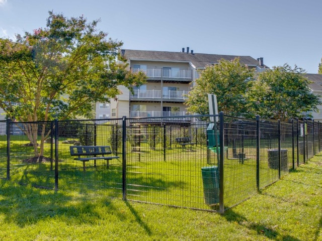 Gated grass area for dogs to play.