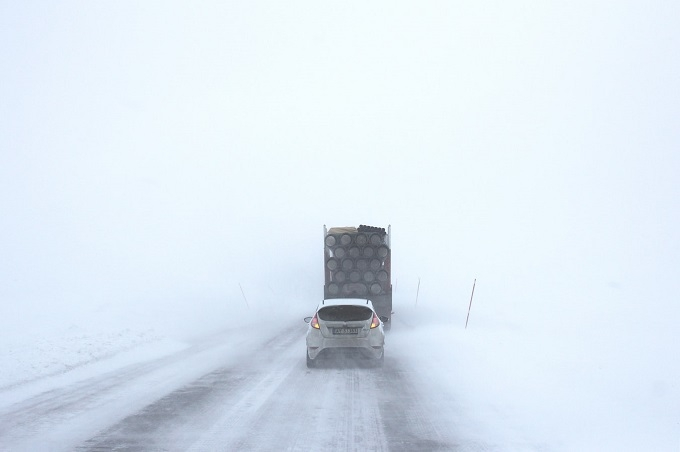 Surviving Winter Storms-image
