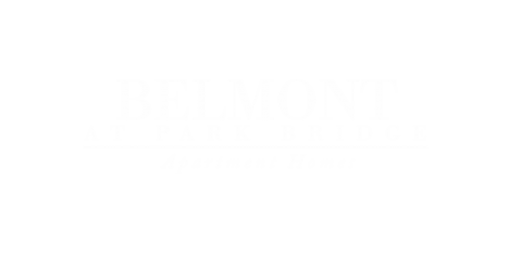 Belmont at Park Bridge