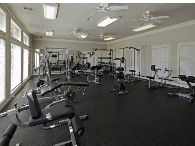 Image of 24-Hour Gym for Cayce Cove
