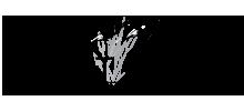 Logo | Brant Creek