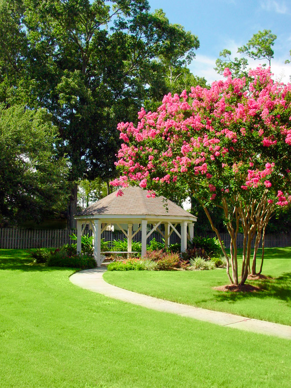 Image of Beautiful mature trees and landscaping with sidewalks and gazebo sitting area for Maison Bocage Apartments