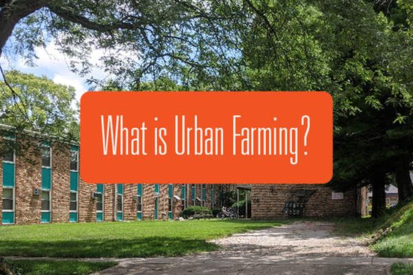 What is Urban Farming?-image