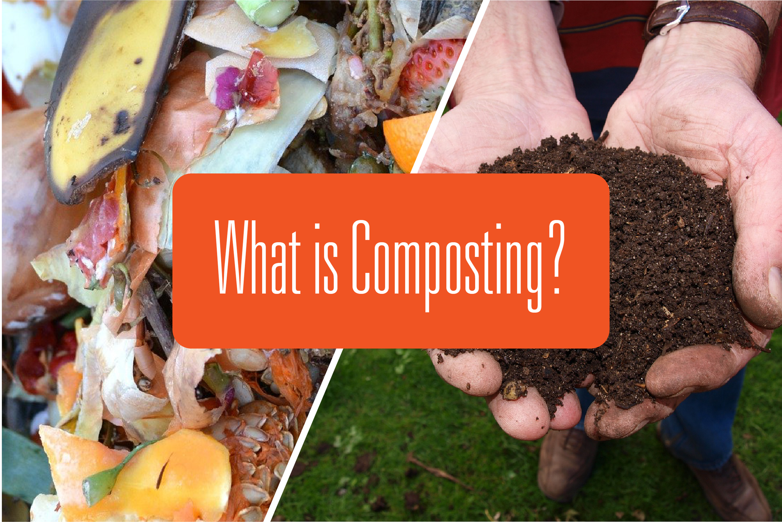 What is Composting?-image