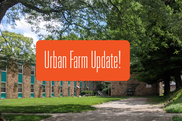 Urban Farm Update!-image
