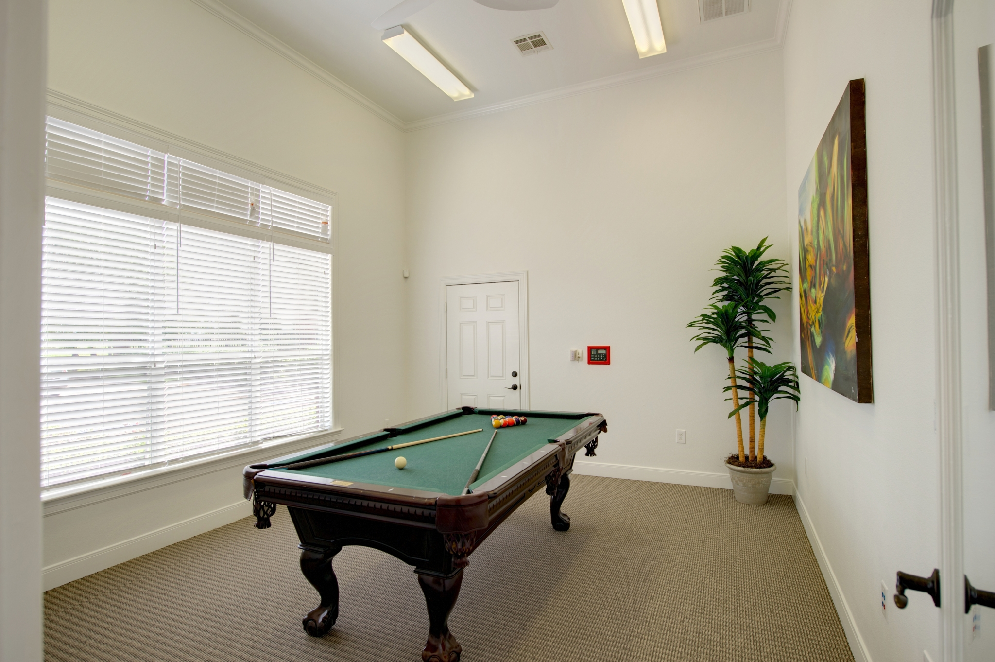 4 bedroom apartments pearland texas - Amenities