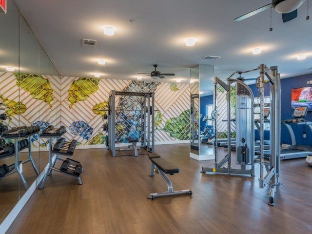 Image of State of the Art Fitness Center for View at Cedar Park