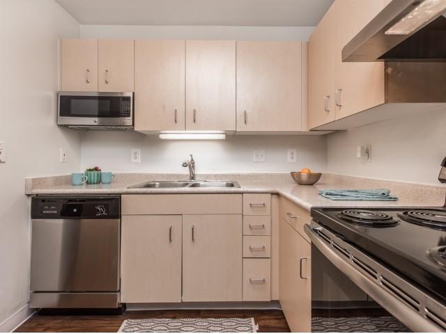 Image of Dishwasher for Stadium Park