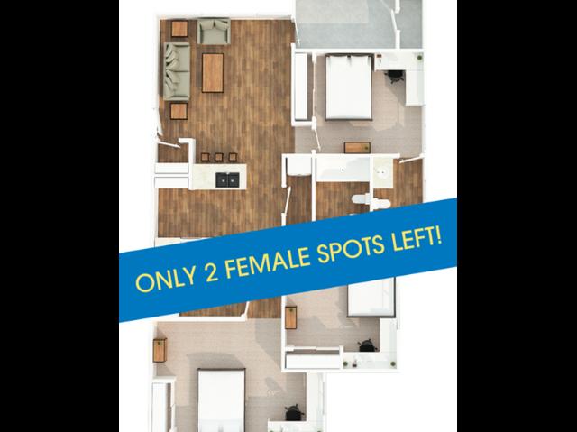 Only 2 Female Spots Left