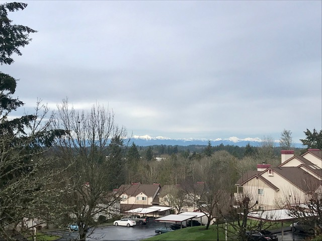 Image of Olympic Mountain Views for BRECKENRIDGE APARTMENTS