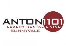 Anton 1101