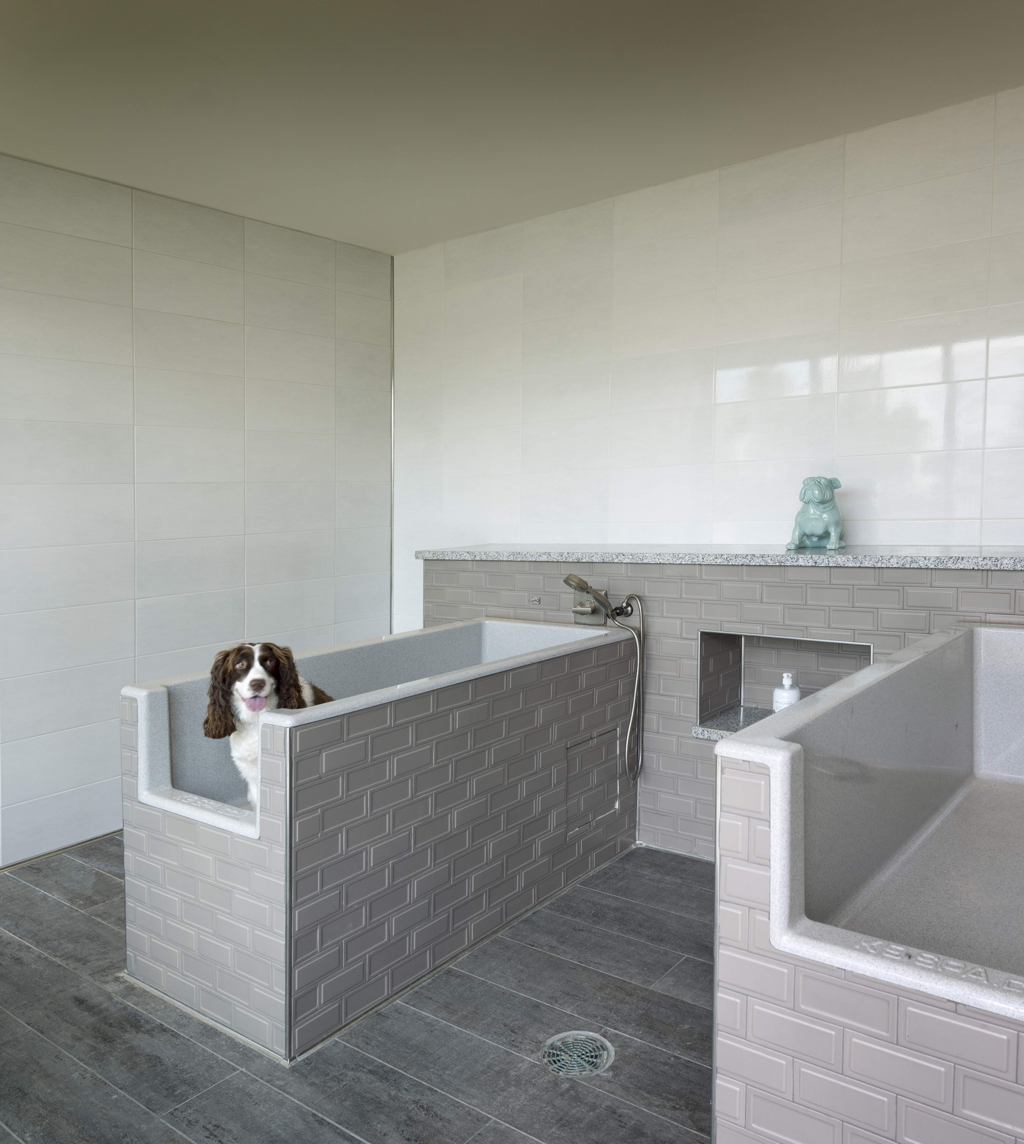 Image of Pet-friendly living including pet washing station for Viridian Design District