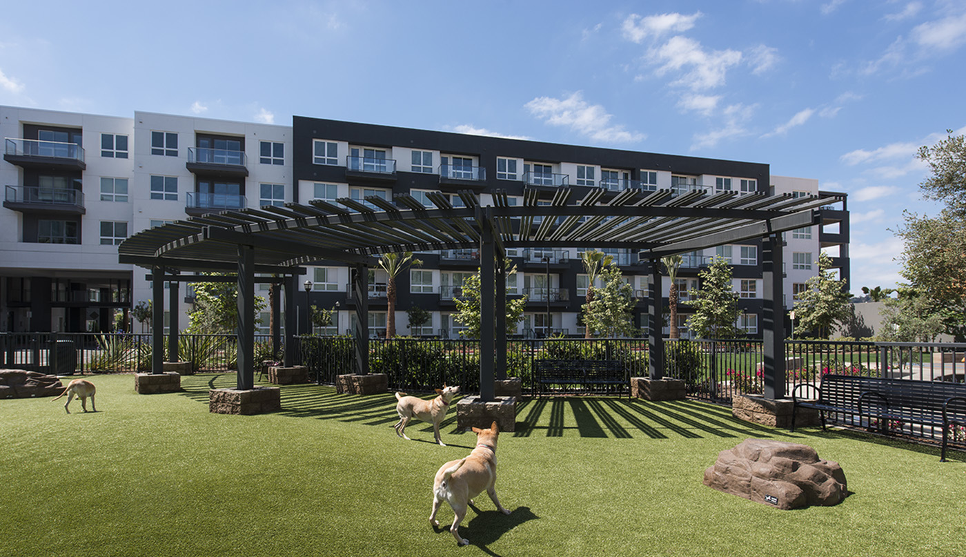Image of Central open space with dog park, bocce ball and social spaces for gathering for Hanover Mission Gorge