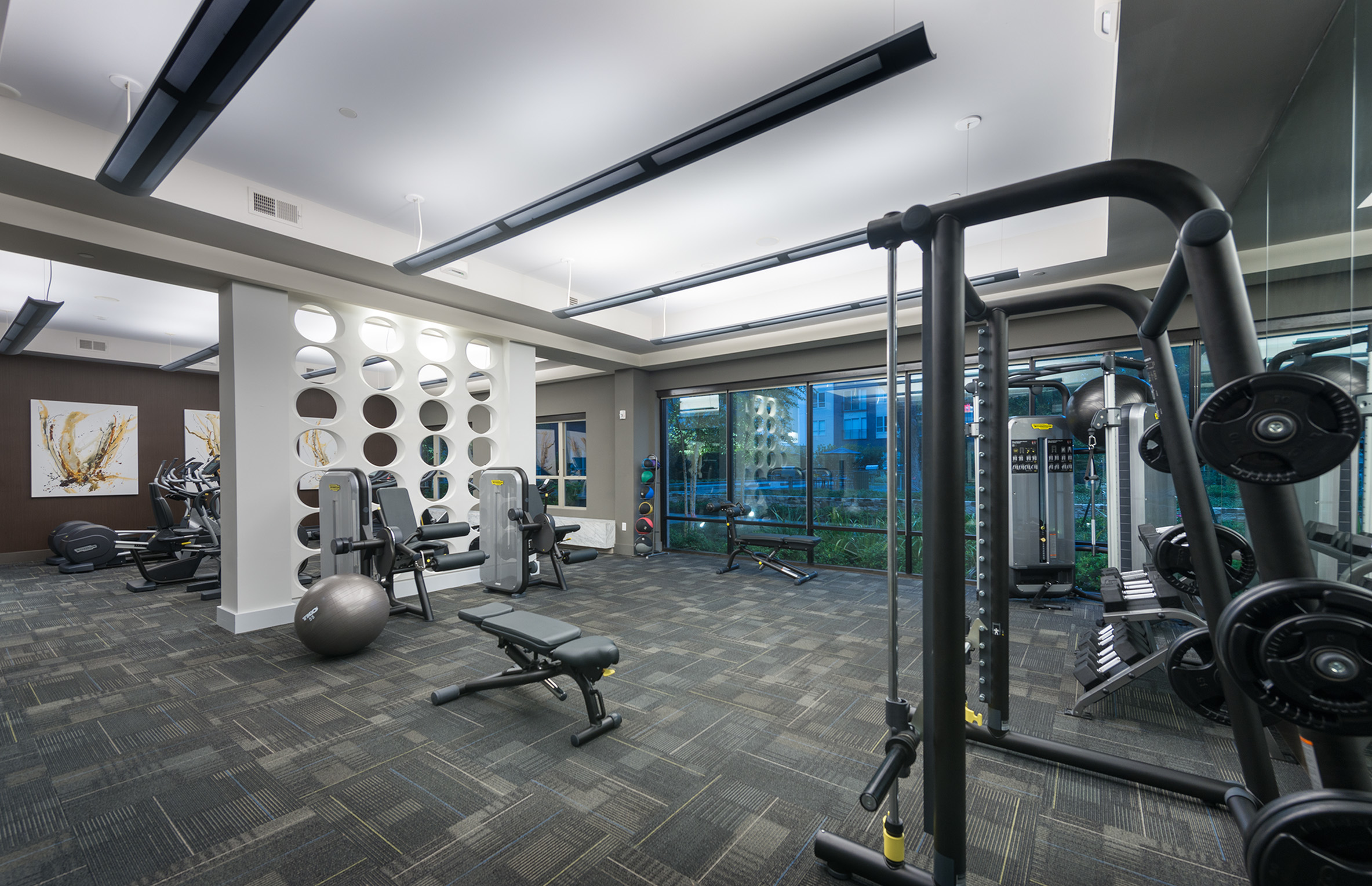 Image of 24/Hr fitness center with TechnoGym equipment for Hanover Midtown Park