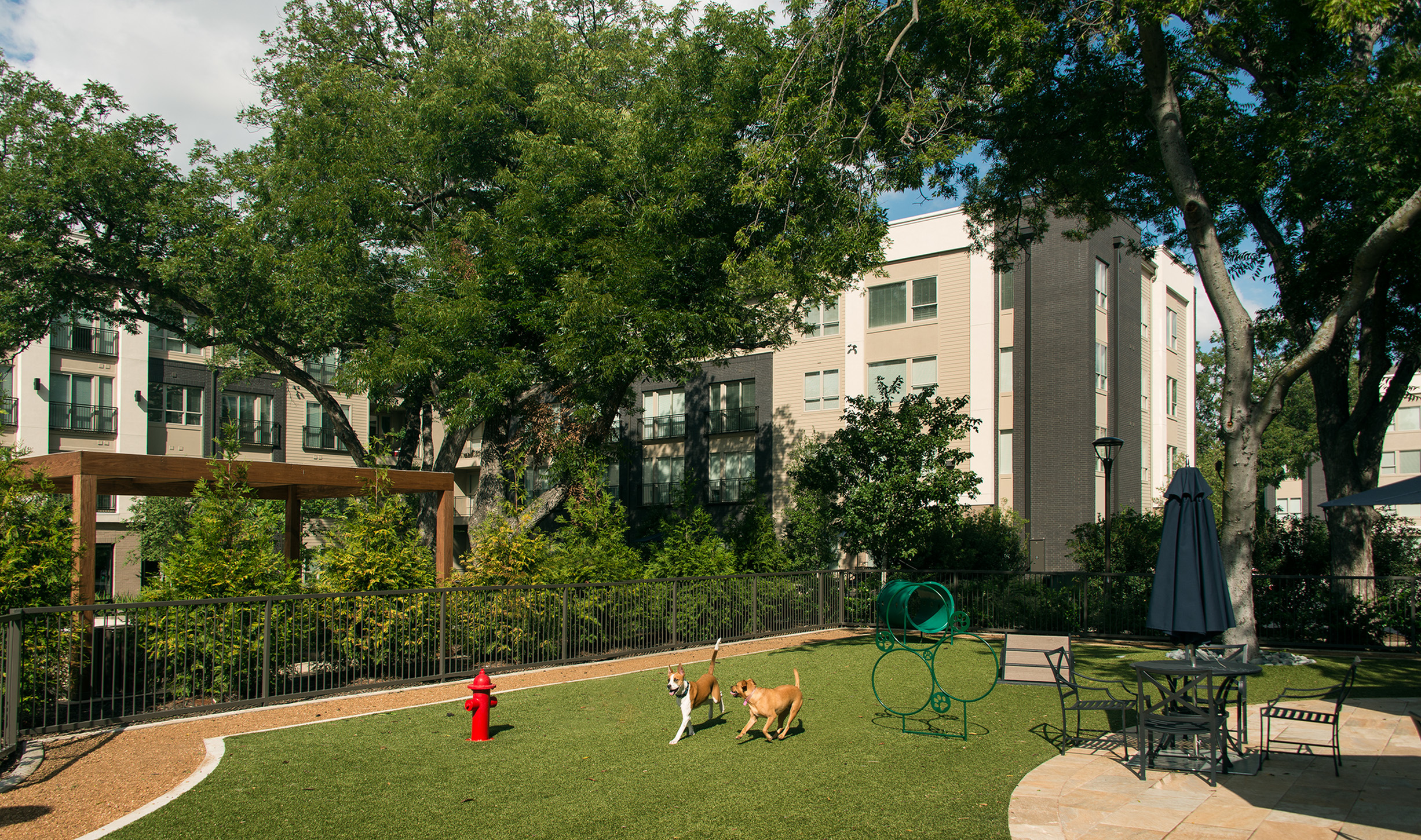 Image of Pet-friendly community with dog park and designated pet washing station for Hanover Midtown Park
