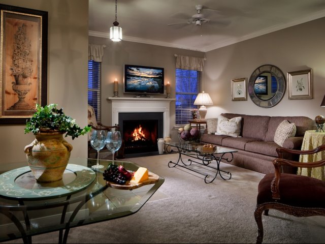 Image of Cozy fuel efficient fireplaces for The Crest at Elm Tree