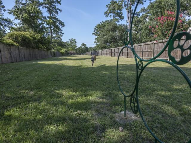 Image of Huge pet park for Oak Grove